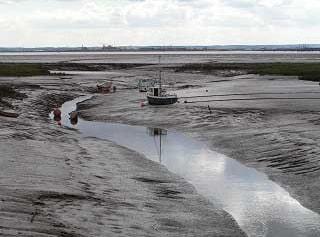 Stone Creek at low tide