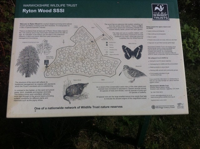 Ryton Woods adjoins Ryton Pools CP. A bluebell wood.