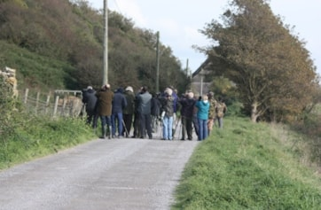 Good crowd, for the Wryneck. :-).