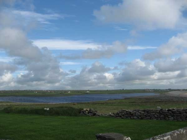 The lough from the north side; water levels were particularly high in 2009 but this site can be excellent for waders if levels are low.