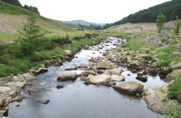 River Dunsop.