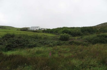 The plantation favoured by the 2008 Yellow Warbler.