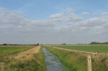 The Cross Drain may not look like much, but in winter it becomes one of the key birding sites on the complex.