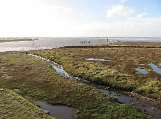Saltmarsh and main channel looking southwest from below Breydon bridge.