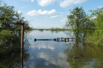 Deep flooding in spring 2012.