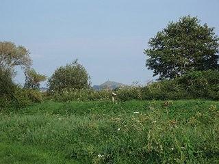 View towards Glastonbury Tor