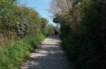 The path between the Orchard & Arboretum on the Stour LNR, Bournemouth.