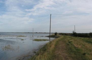 The salt marsh covered at high tide.