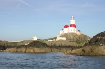The 'smudge' just left of the lighthouse was actually the Sooty Tern present at the time.