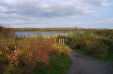 Path to wader scrape hide.