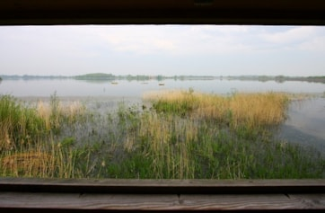 Looking out from the Scott hide, on a hot calm day.