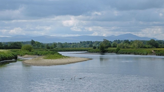 Carr Beds (or Carr Bed according to the OS map) seen from the Rockcliffe side of the River Eden at low tide.