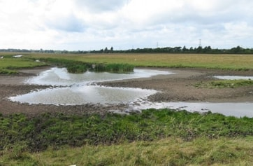 The Entrance Pools at Newton Marsh.