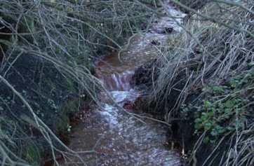 The inlet stream, runs orange with rust.