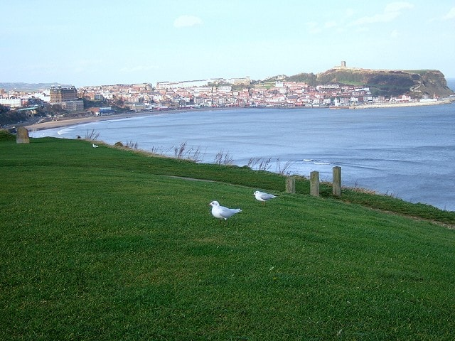 View looking north from Holbeck car park (Mediterranean Gull in foreground!)