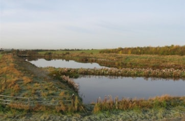 The 'Dump Pool' just East of the refuse collection centre along the sea wall.