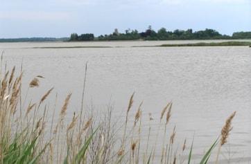 River Alde at Iken.