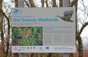 Solway Wetlands information noticeboard.