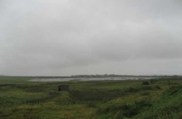 Shannon Airport Lagoon.