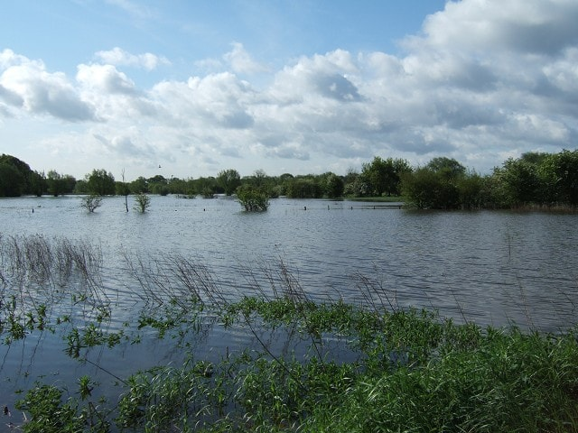In flood, looking south