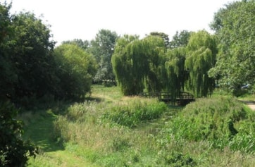 The Delph Ditch, Maldon Prom Park.