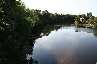 River Coquet from Warkworth Bridge