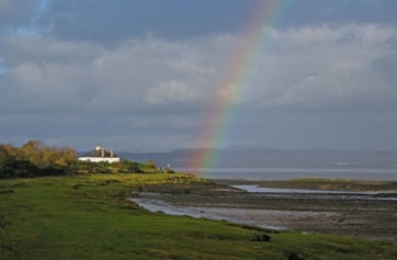 No Long-billed Dowitcher today, but there was this nice rainbow!