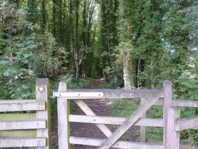Brockadale woods nature reserve is a fantastic place for birds and butterflies there's pasture river and woodland walks all equally lovely easy underfoot pleasant walks.