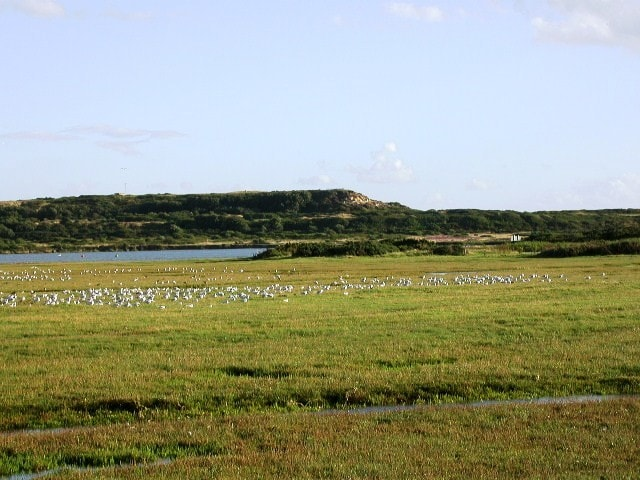From Stanpit towards Hengistbury