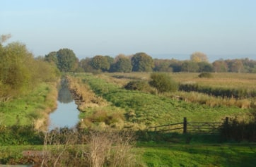 View from old Ashcott railway bridge, overlooking western edge of Ham Wall and north towards Meare.