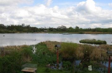 Moors Pool, taken from West Hide.