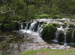 """Waterfall, Lathkill Dale (<a href=""""http://www.multimap.com/map/places.cgi?client=europe&quicksearch=SK181657&scale=25000"""" target=""""_blank"""">SK181657</a>)."""
