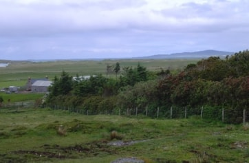Clachan Farm; just off the B893 to the south of Newton ferry, playing host to a Veery in October 1995.