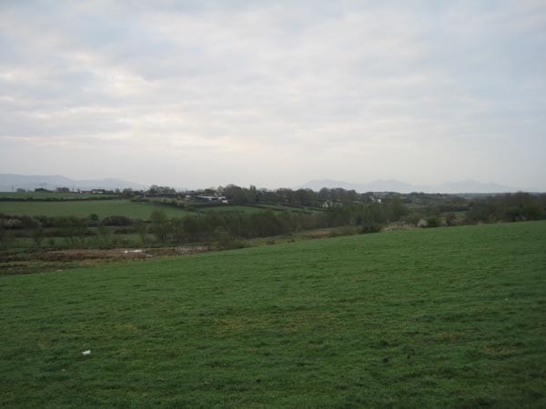 Looking towards the valley and the pool frequented by a Purple Heron in April 2011.