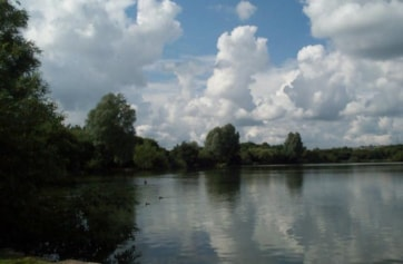A subsidence 'flash' in Stoke-on-Trent, caused by coal mining. The lake now has an excellent visitor centre managed by Staffordshire Wildlife Trust. There is a nature reserve with usual woodland species; a good place for siskin and redpoll in the win