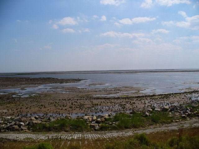 Looking south-west from the sea wall.