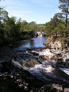 Low Force.