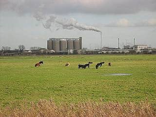 Looking from the river across the marshes to Cantley Sugar Beet Factory.