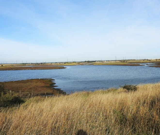 Greatham Creek at high tide.