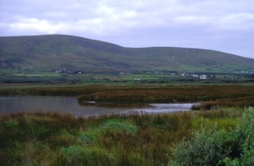 The pool just inland of the beach at Ventry.