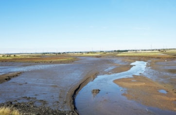 Greatham Creek at low tide.
