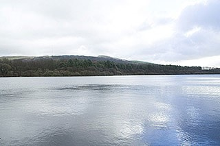 "Reservoir at <a href=""/birdnews/gridref.asp?gr=SD625135&a=y"" target=""_blank"">SD625135</a>. Taken using my Canon 350D with the standard 18-55mm kit lens."