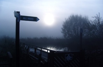 One of the dragonfly pools, taken early morning during a November WeBS count.