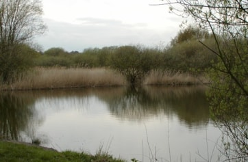 Hay-a-Park Gravel Pits - part of the small fishing ponds