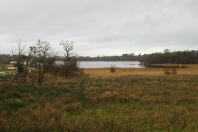The lough, as viewed distantly from the minor road just past the agricultural college on the south side.