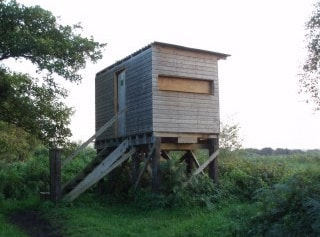 Noah's hide