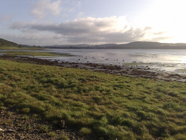 The view from Gibb Hill towards Kirkcudbright. There are 5 Spoonbills out there somewhere.