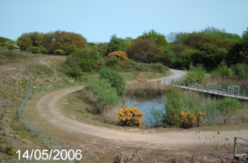 View over Sand Martin bank and pond