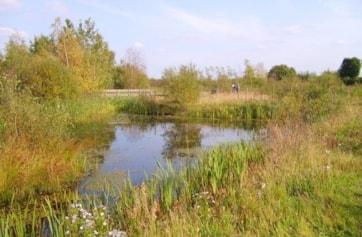 Ponds 1.