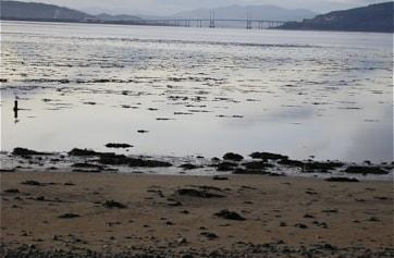 Looking over Alturlie Bay towards the A9 Kessock Bridge